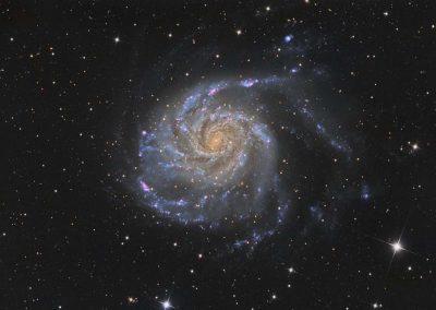 "M101 Galaxy by D. Wilson, 17"" Imaging Dall Kirkham, SBIG STXL 11002M"