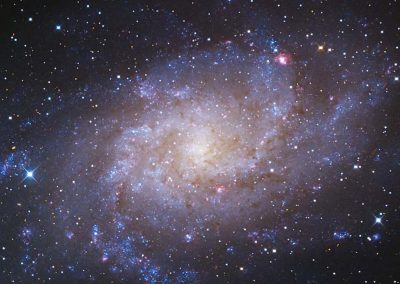"M33 Triangulum Galaxy by D. Wilson, 17"" Imaging Dall Kirkham, SBIG STXL 11002M"