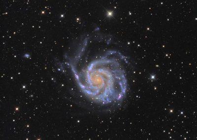 "M101 Galaxy by M. Miller, 12.5"" Imaging Dall Kirkham, Apogee U16M"
