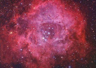 """Rosette Nebula by S. Johnson, 12.5"""" Newtonian, Apogee U16M"""